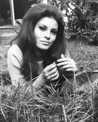 """RAQUEL WELCH Poster Print 24x20"""" cool pic 190145"""