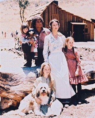"""MELISSA S ANDERSON AS MARY INGALLS  Poster Print 24x20"""" great image 26949"""