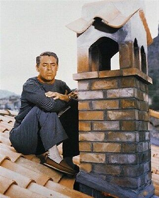 """CARY GRANT AS JOHN ROBIE FROM TO CA Poster Print 24x20"""" classic photo 242139"""