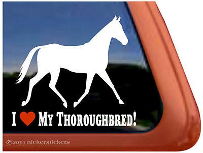 I Love My Thoroughbred Horse Trailer Decal Sticker