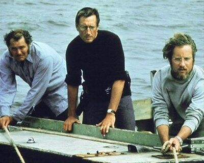 JAWS MOVIE PHOTO 8x10 Photo cool image 269134