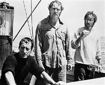 JAWS MOVIE PHOTO 8x10 Photo