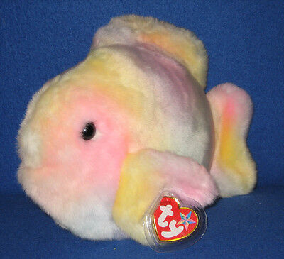 Retired TY CORAL the FISH BEANIE BUDDY - MINT with MINT TAG