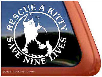RESCUE A KITTY SAVE NINE LIVES ~  Kitty Cat Kitten Window Decal Sticker