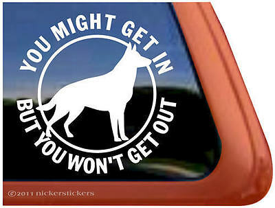 YOU MIGHT GET IN BUT YOU WON'T GET OUT- German Shepherd Dog Window Decal Sticker