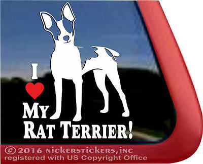 I LOVE MY RAT TERRIER ~ High Quality Vinyl Dog Decal Sticker | NickerStickers
