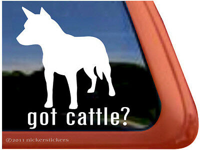 GOT CATTLE? ~ High Quality Vinyl Australian Cattle Dog Window Decal Sticker