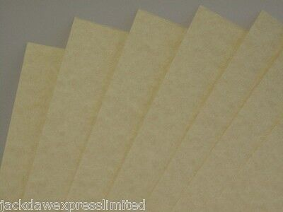 20 x Parchment Heavyweight Paper A4 176gsm Natural Certificates Cardmaking AM357