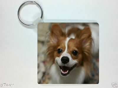 PAPILLON PICTURE KEYRING No 1, THE BUTTERFLY DOG