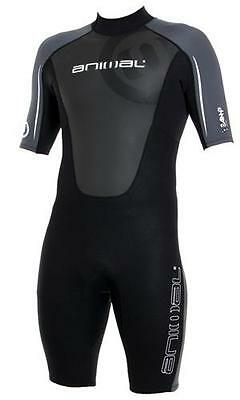 Half Price Sale Animal AMP 3/2 Summer Shorty mens surfing Wetsuit S M MS 27619