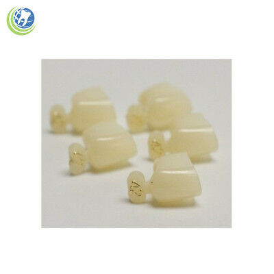 Dental Polycarbonate Temporary Crowns #42 First (1St) Bicuspid Small 5/pack