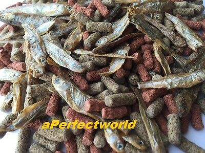Best Quality+Value~~Mixed Food for Turtles/Terrapins,Complete diet, Free UK P+P