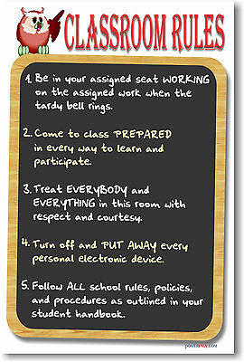 NEW POSTER  -  CLASSROOM MOTIVATIONAL  -  Classroom Rules 4