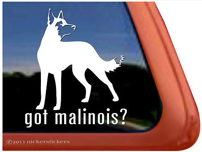 Got Malinois? ~ Belgian Malinois High Quality Vinyl Dog Window Decal Sticker