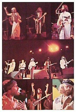 Authentic 1970s~BEACH BOYS~Concert Icon Surf Poster