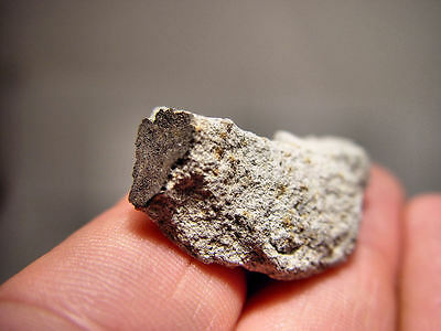 New Chinese Witnessed Fall! Its Official! Super Crusted Xining Meteorite 11.8 Gm