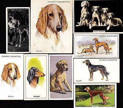 9 Different Vintage SALUKI Dog Cigarette Cards