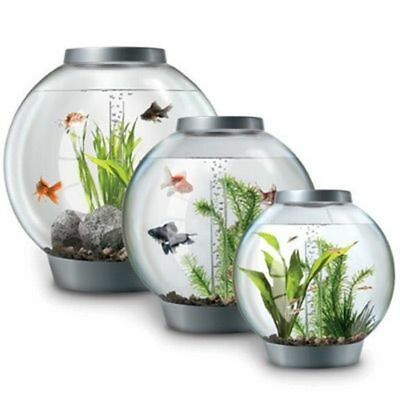 Oase Biorb Tropical With Standard Led Light 15 30 60 Litre Fish Tank Bowl