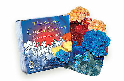Crystal Growing Kit Amazing Crystal Garden, Grow Your Own Crystals