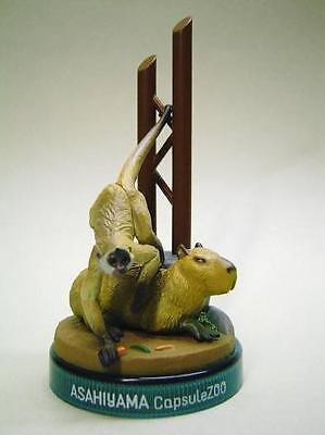 NEW RARE Kaiyodo Gashapon Asahiyama Zoo Capybara and Spider Monkey Figure
