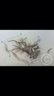 Upside Down Whippet - Limited Edition Print - Jo Constant