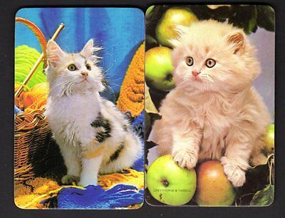 Vintage Swap Cards - Lovely Kittens x 2 (BLANK BACKS) (MINT CONDITION)