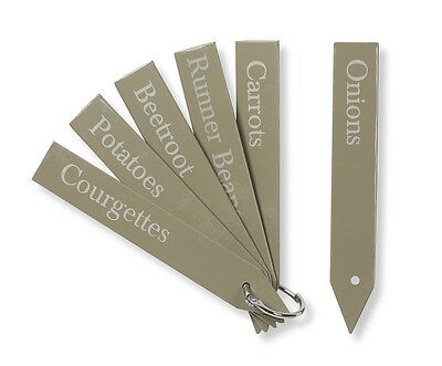 Set of 6 Small Plant Tags in Gooseberry Colour by Garden Trading