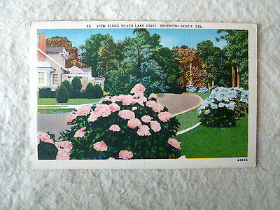 VIEW ALONG SILVER LAKE DRIVE, REHOBOTH BEACH, DEL. - MID 1900'S LINEN POST CARD
