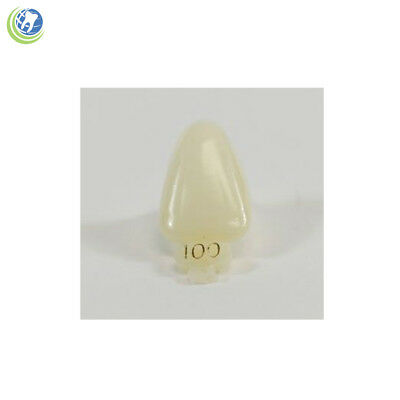Dental Polycarbonate Temporary Crowns #100 (Urc) Upper Right Central 5/pack
