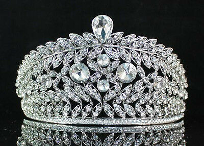 Vines Clear Rhinestone Crystal Tiara With Hair Combs Bridal Prom Pageant T1503