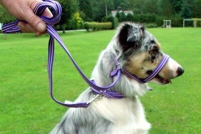 Gencon All In One Clip To Collar Headcollar Lead Dog Training Anti Pull Soft