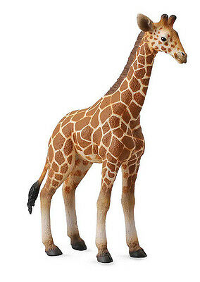 FREE SHIPPING | CollectA 88535 Reticulated Giraffe Calf Toy - New in Package