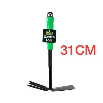 Super Sweet Black Strawberry Seeds = Heirloom = Rare = Wild = Exotic