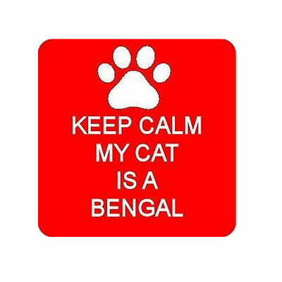 Keep Calm My Cat Is A Bengal Square Fridge Magnet Novelties