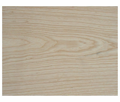 Swamp Ash - ONE piece - Guitar wood blanks  **UK's largest selection**