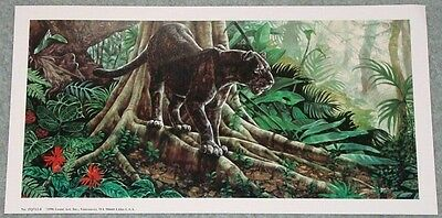 BLACK LEOPARD IN A TROPICAL FOREST: 13x7 In. Art Print