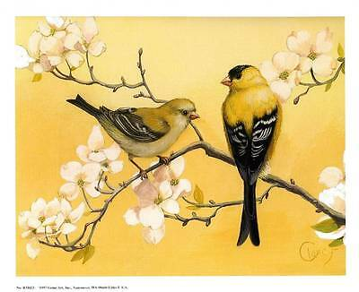 Goldfinches by Clancy - Beautiful 11x9 In. Art Print