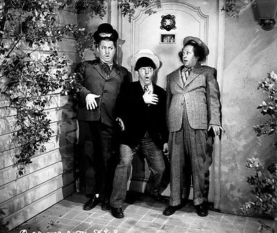 8x10 Print The Three Stooges #2904