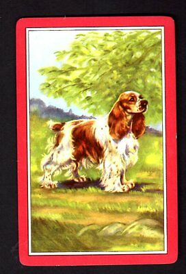 Vintage Swap/Playing  Card - Lovely Cocker Spaniel