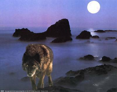 Prowling Wolf Under a Full Moon: 10x8 In. Wildlife Art Print