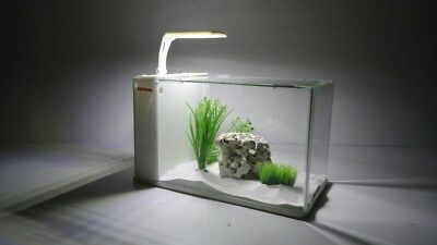 Aqua Orion 40 in weiß Nano Aquarium Komplettaquarium Mini +LED & MONDLICHT!