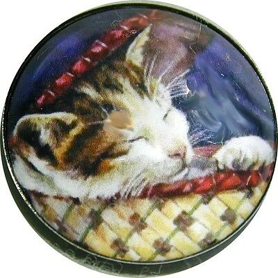 Vintage Cat Sleeping in Basket  Crystal Dome Button FREE US SHIPPING C 66