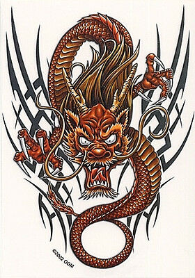 Rare CHINESE TRIBAL GOLD RAGING DRAGON ASIAN CAR Vinyl STICKER/DECAL Art By ODM