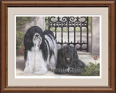 TIBETAN TERRIERS limited edition dog print by Lynn Paterson