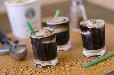 MAKE YOUR VERY OWN STARBUCKS DRINKS AND DESSERT W/ RECIPES - eBook-PDF file
