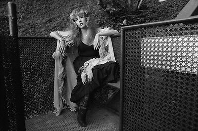 Stevie Nicks 8X10 Glossy Photo Picture Image #2