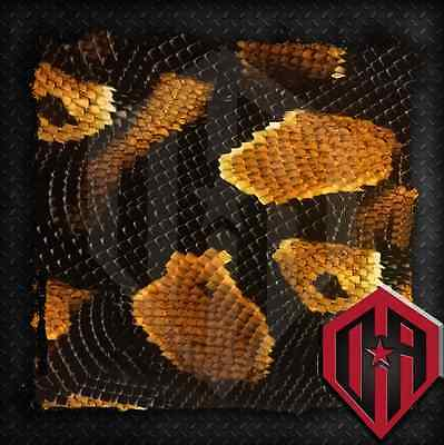 Hydrographic Water Transfer Film Hydrodipping Hydro Dip Gold Snake Skin Print
