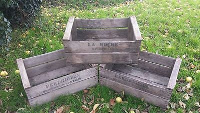 6 pack of VINTAGE FRENCH WOODEN PEAR CRATE BOX SHOP RESTAURANT CAFE DISPLAY*