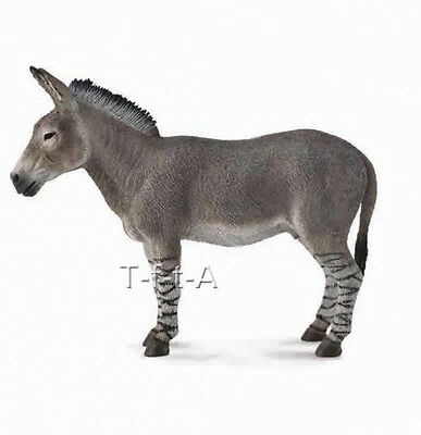 FREE SHIPPING | CollectA 88664 African Wild Ass Donkey 2014 Toy - New in Package