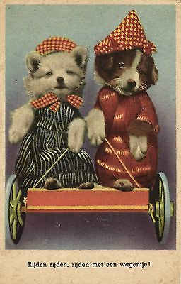 dressed dogs Collie Lassie Terrier dog cute old postcard